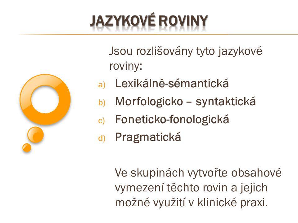 Jsou rozlišovány tyto jazykové roviny: a) Lexikálně-sémantická b) Morfologicko – syntaktická c) Foneticko-fonologická d) Pragmatická Ve skupinách vytv