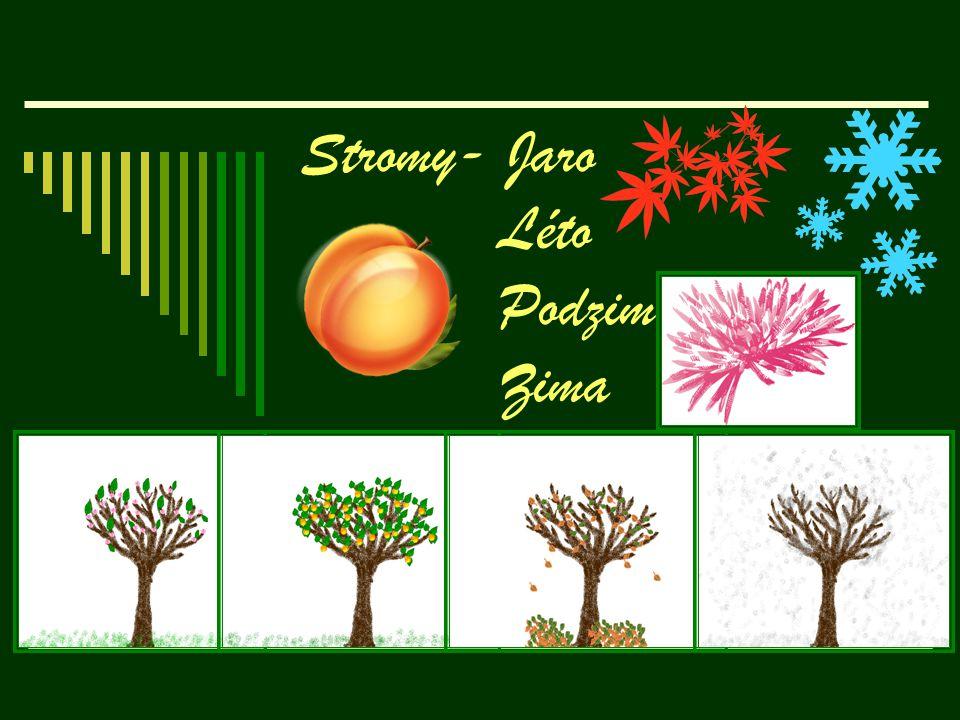 Jaro Jaro je jedno ze 4 období.V mírném pásu je tipická pro vegetativní aktivity rostlin apod.Dny se protahují, otepluje se.Jaro se slaví 21.