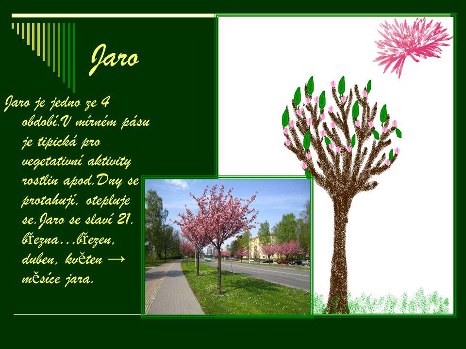 Jaro Jaro je jedno ze 4 období.V mírném pásu je tipická pro vegetativní aktivity rostlin apod.Dny se protahují, otepluje se.Jaro se slaví 21. b ř ezna