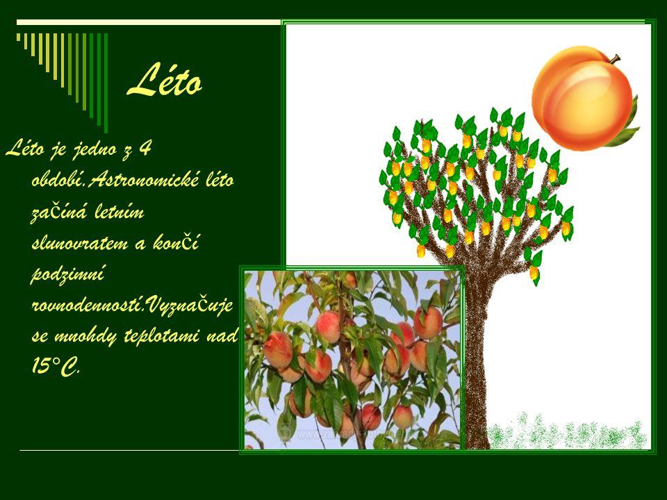 Podzim Pozim je nejbarevn ě jší období ze všech.Je to p ř echod mezi létem a zimou.Dny se krátí, č ast ě ji prší a ochlazuje se.Na podzim stromy opadávají.Na n ě kterých jsou i plody.