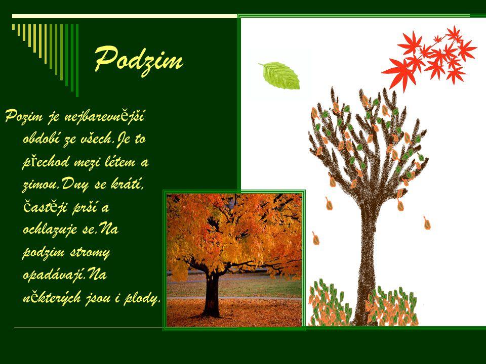 Podzim Pozim je nejbarevn ě jší období ze všech.Je to p ř echod mezi létem a zimou.Dny se krátí, č ast ě ji prší a ochlazuje se.Na podzim stromy opadá
