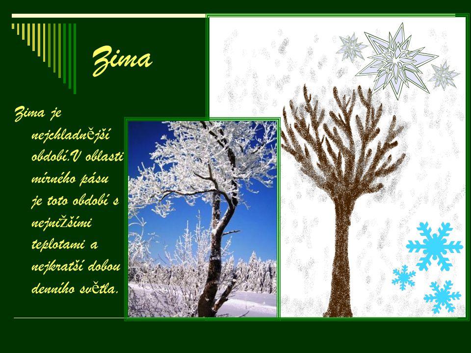 Zima Zima je nejchladn ě jší období.V oblasti mírného pásu je toto období s nejni ž šími teplotami a nejkratší dobou denního sv ě tla.