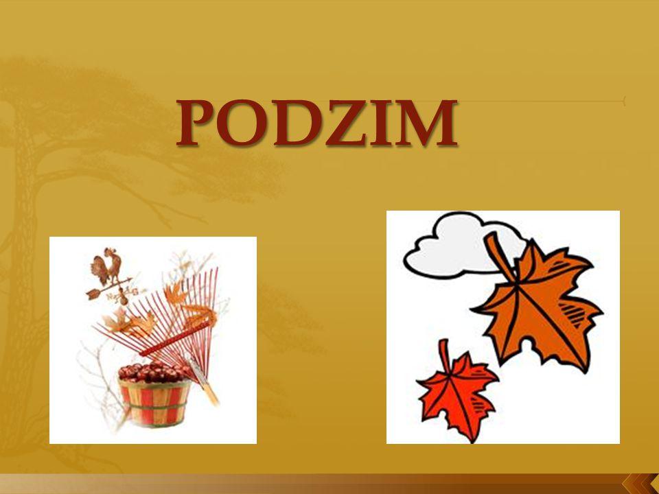 červen prosinec srpen listopad únor březen leden duben říjen září květen červenec