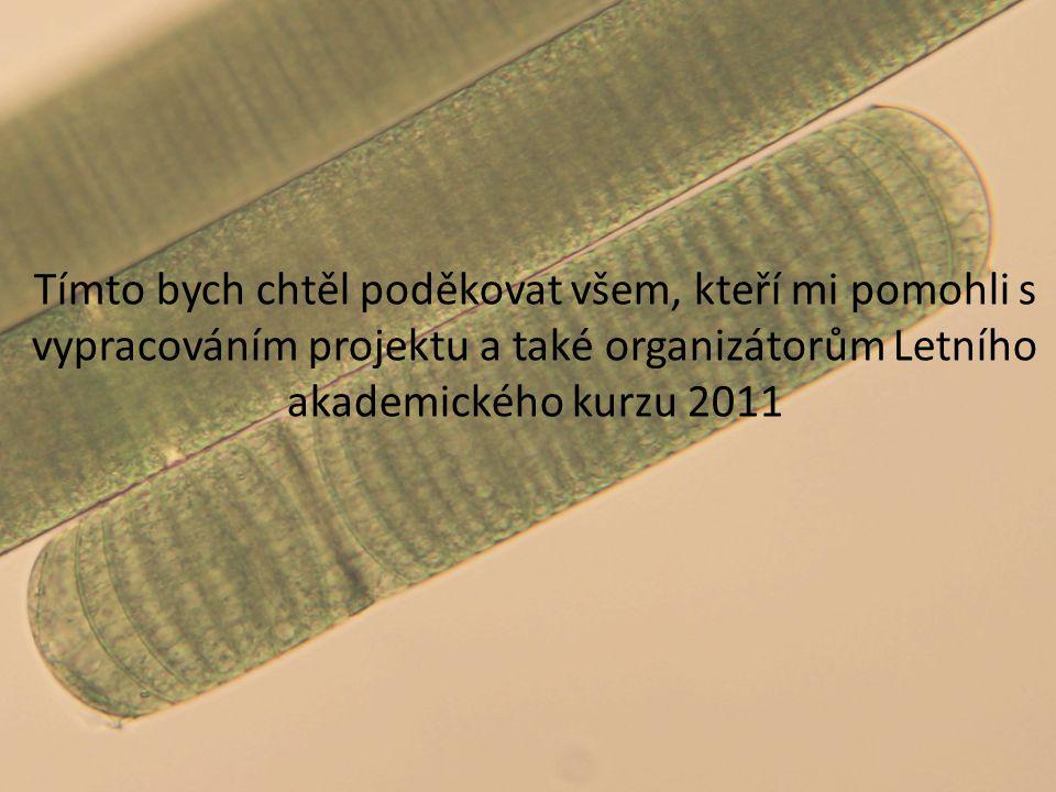 Tímto bych chtěl poděkovat všem, kteří mi pomohli s vypracováním projektu a také organizátorům Letního akademického kurzu 2011