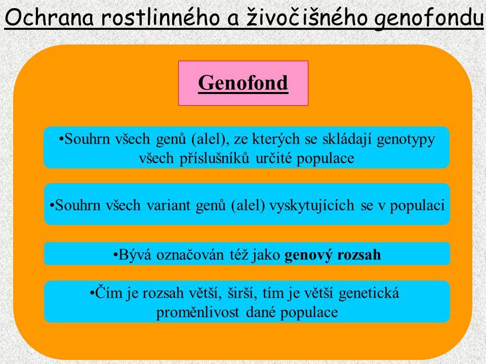 Ochrana rostlinného a živočišného genofondu Souhrn všech genů (alel), ze kterých se skládají genotypy všech příslušníků určité populace Genofond Bývá