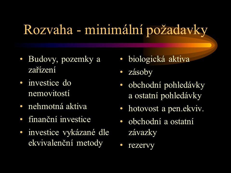 Rozvaha - minimální požadavky Budovy, pozemky a zařízení investice do nemovitostí nehmotná aktiva finanční investice investice vykázané dle ekvivalenč