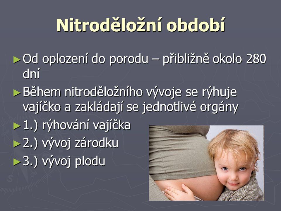 Nitroděložní období ► Od oplození do porodu – přibližně okolo 280 dní ► Během nitroděložního vývoje se rýhuje vajíčko a zakládají se jednotlivé orgány ► 1.) rýhování vajíčka ► 2.) vývoj zárodku ► 3.) vývoj plodu