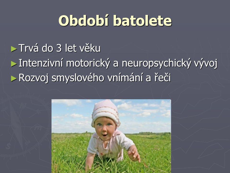 Období batolete ► Trvá do 3 let věku ► Intenzivní motorický a neuropsychický vývoj ► Rozvoj smyslového vnímání a řeči