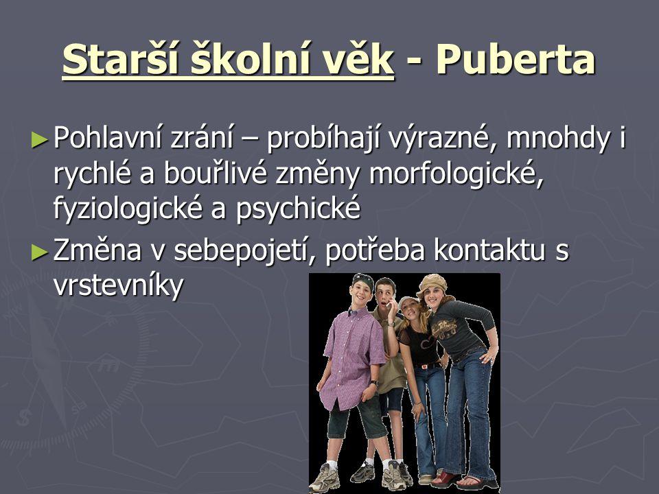 Starší školní věk - Puberta ► Pohlavní zrání – probíhají výrazné, mnohdy i rychlé a bouřlivé změny morfologické, fyziologické a psychické ► Změna v sebepojetí, potřeba kontaktu s vrstevníky
