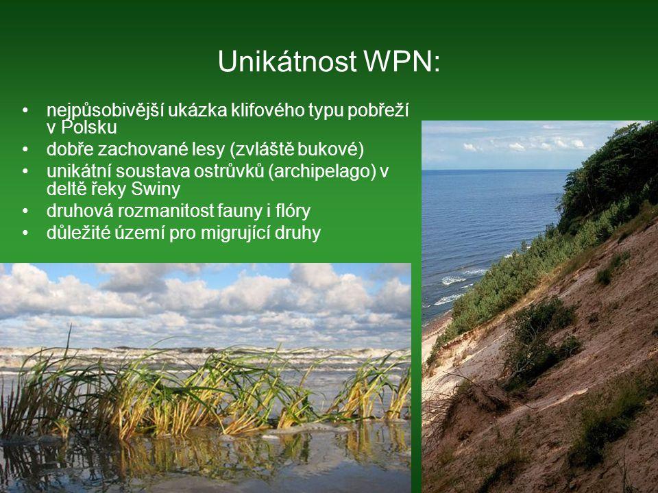 Fauna velká geografická členitost ostrova způsobila, že se svět zvířat na ostrově Wolin stal velmi různorodý na ostrově se kříží trasy migrujícího ptactva – během roku lze pozorovat až 230 druhů ptáků terén WPN poskytuje životní prostředí několika párům orla mořského – symbol NP úspěšné pokusy o navrácení výra velkého do WPN v ohrazené rezervaci (17ha) na území WPN žijí a rozmnožují se zubři evropští na pláži lze vidět tuleně šedého