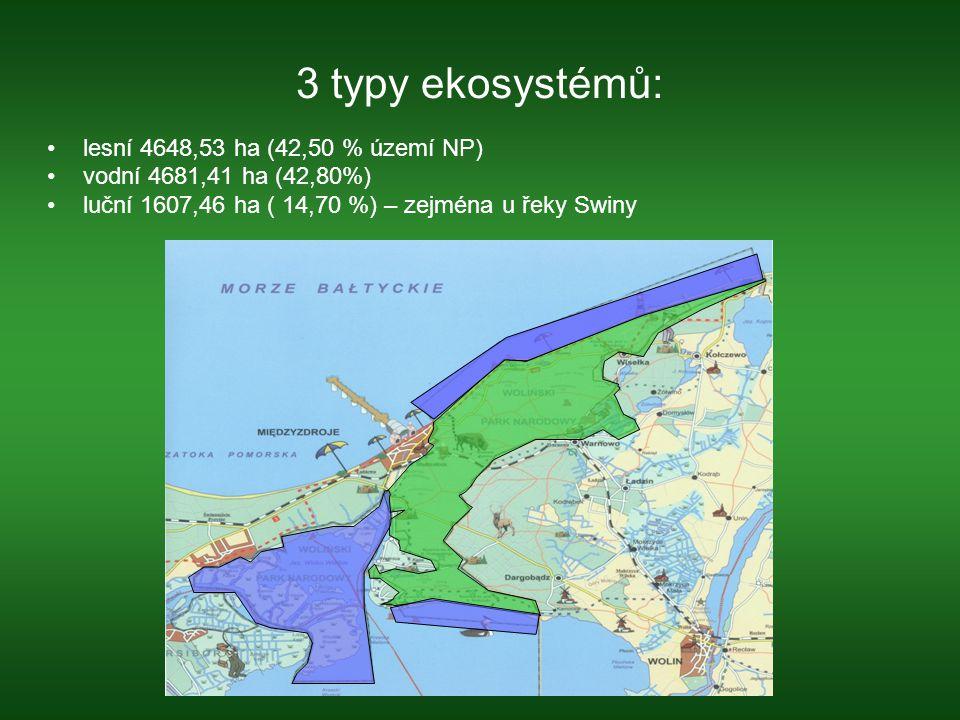 3 typy ekosystémů: lesní 4648,53 ha (42,50 % území NP) vodní 4681,41 ha (42,80%) luční 1607,46 ha ( 14,70 %) – zejména u řeky Swiny