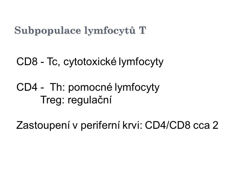 Subpopulace lymfocytů T CD8 - Tc, cytotoxické lymfocyty CD4 - Th: pomocné lymfocyty Treg: regulační Zastoupení v periferní krvi: CD4/CD8 cca 2