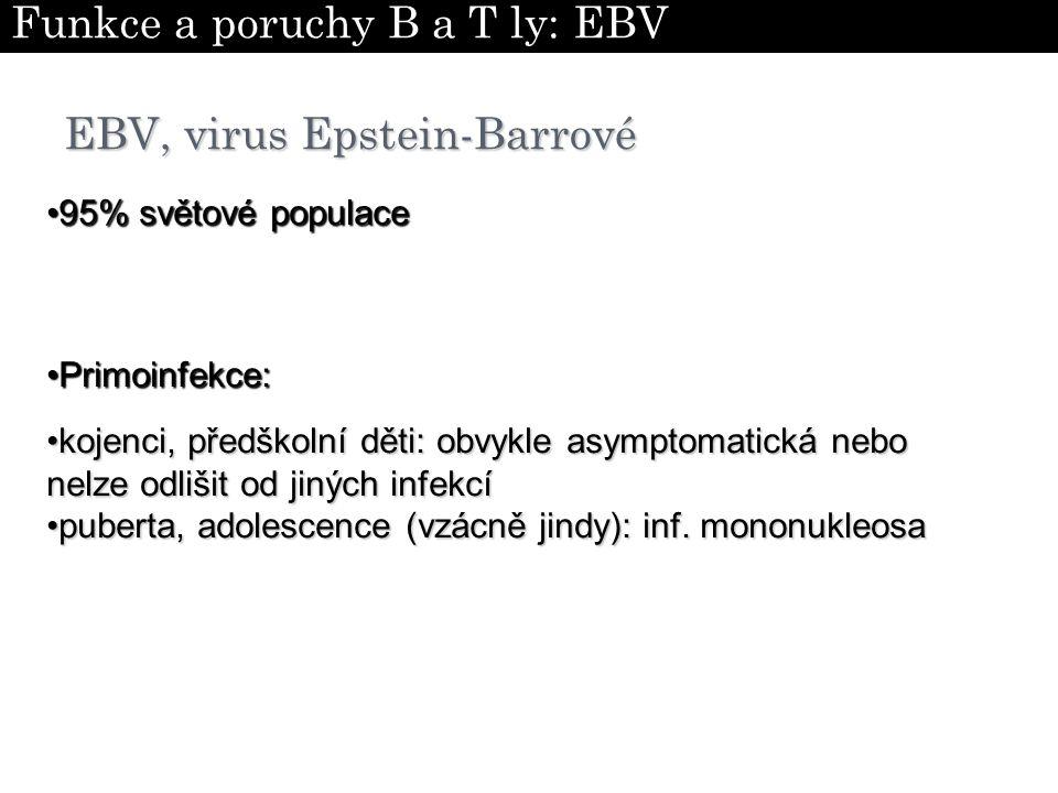 EBV, virus Epstein-Barrové kojenci, předškolní děti: obvykle asymptomatická nebo nelze odlišit od jiných infekcíkojenci, předškolní děti: obvykle asym