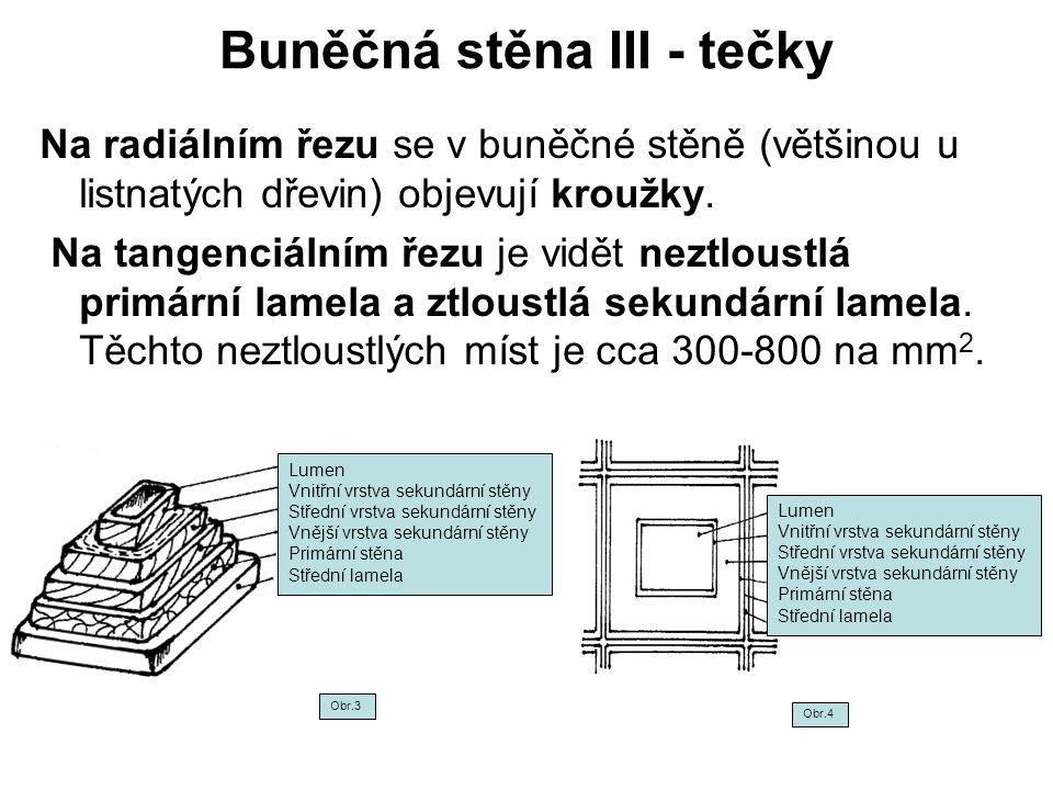 Buněčná stěna III - tečky Na radiálním řezu se v buněčné stěně (většinou u listnatých dřevin) objevují kroužky. Na tangenciálním řezu je vidět neztlou