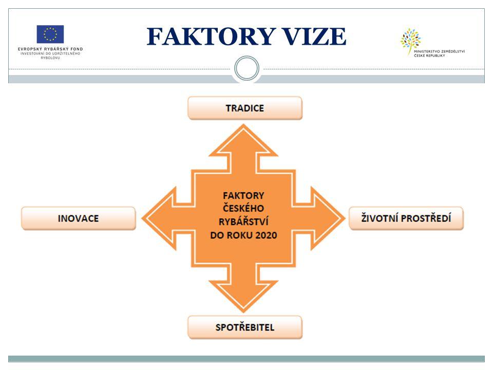 FAKTORY VIZE