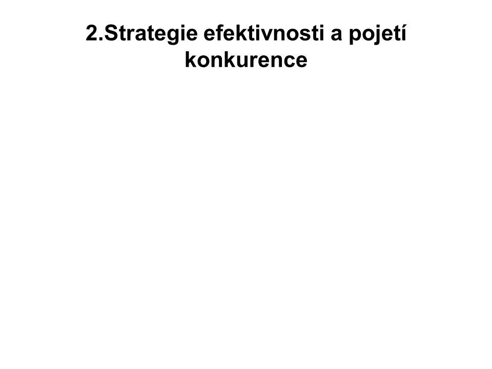 e)Strategické kompetentnosti - demokratizace strategií