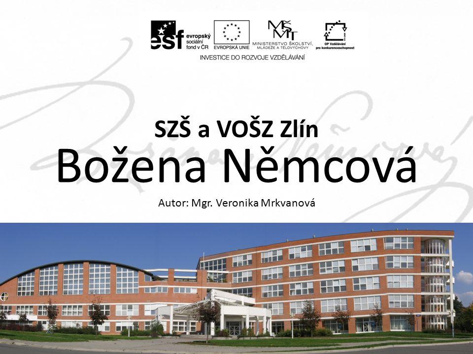 ZA, 2.ročník, Literatura 19. století, Božena Němcová, Mgr.