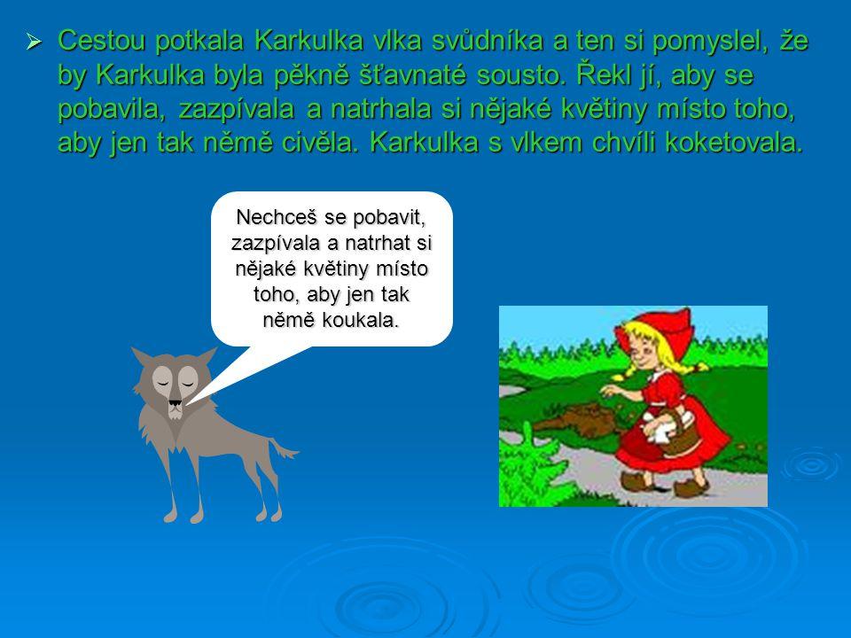 Cestou potkala Karkulka vlka svůdníka a ten si pomyslel, že by Karkulka byla pěkně šťavnaté sousto. Řekl jí, aby se pobavila, zazpívala a natrhala s