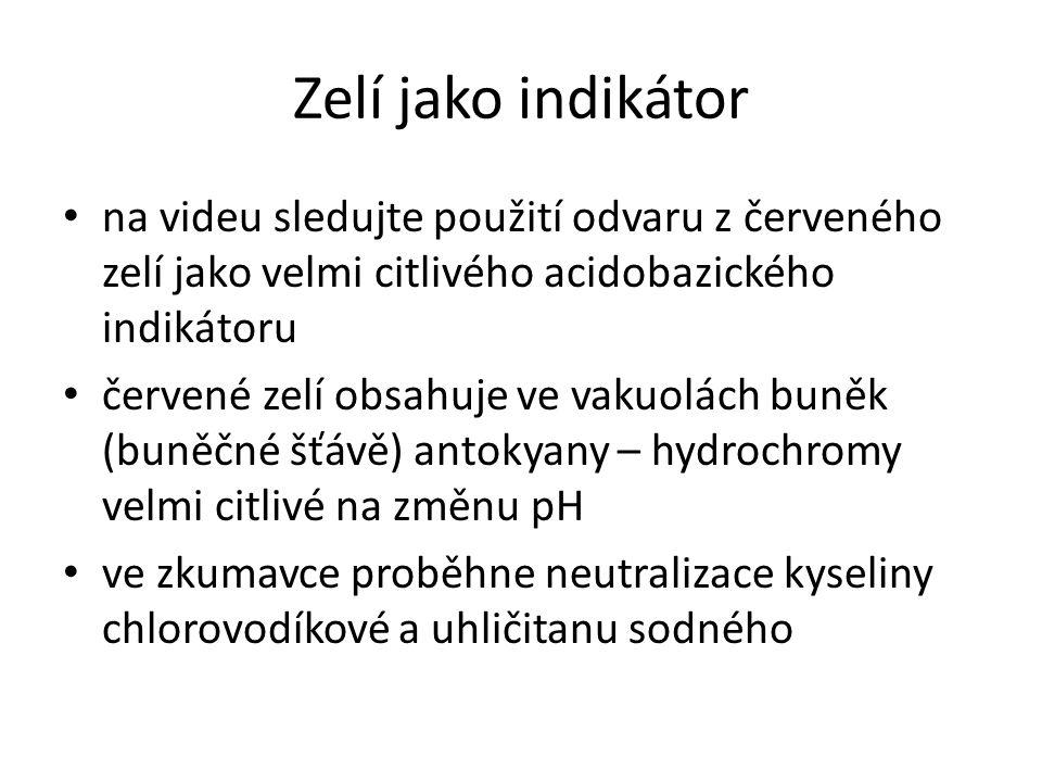 Zelí jako indikátor na videu sledujte použití odvaru z červeného zelí jako velmi citlivého acidobazického indikátoru červené zelí obsahuje ve vakuolác