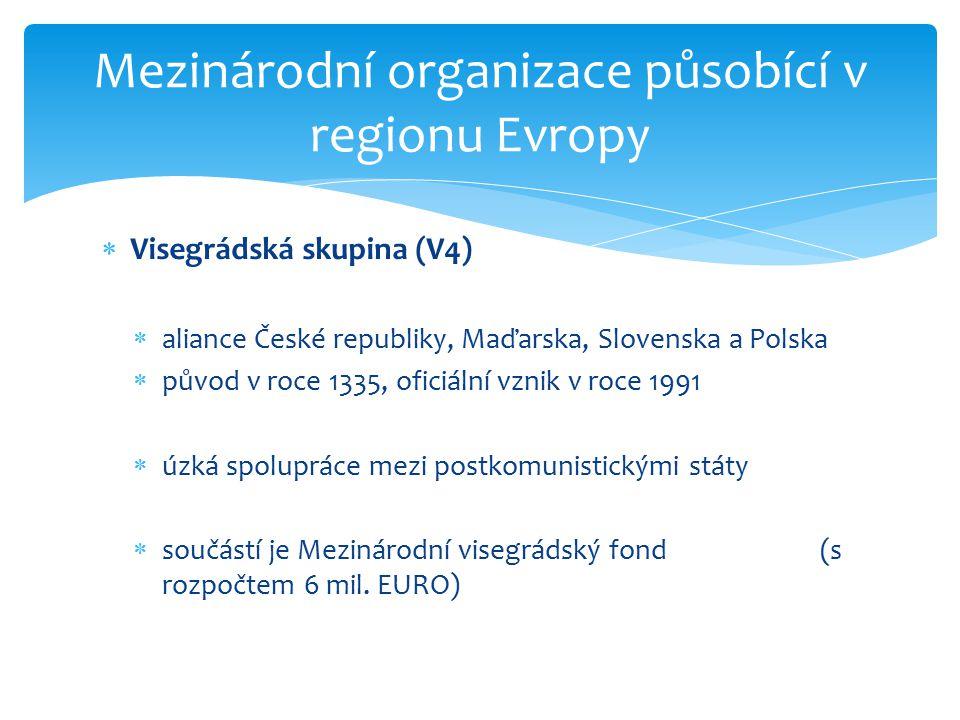 Mezinárodní organizace působící v regionu Evropy  Organizace pro bezpečnost a spolupráci v Evropě (OBSE)  vznikla roku 1995 transformací Konference o bezpečnosti a spolupráci v Evropě  56 členů (nejen z Evropy)  uskutečňuje mise v rizikových oblastech Evropy (Makedonie, Kosovo, Gruzie, Chorvatsko, ….)  generálním tajemníkem je Lamberto Zannier