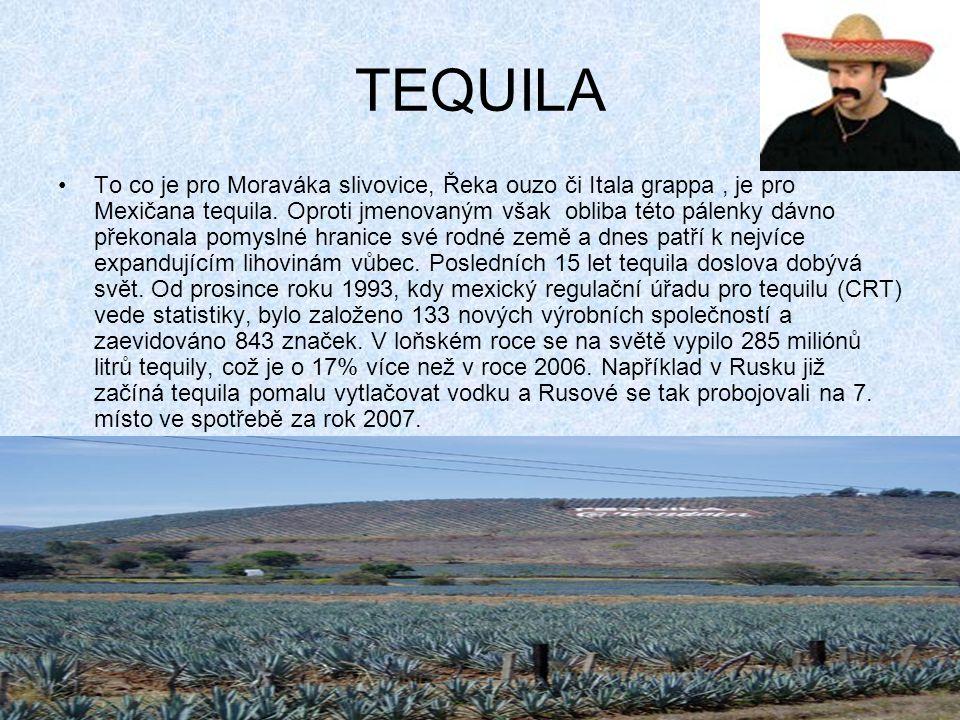 TEQUILA To co je pro Moraváka slivovice, Řeka ouzo či Itala grappa, je pro Mexičana tequila.