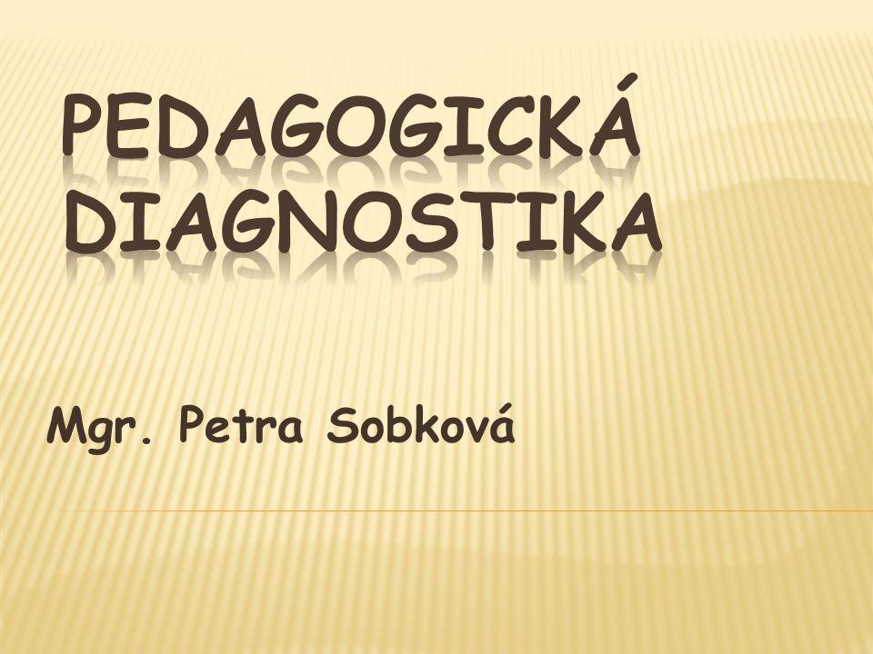 Mgr. Petra Sobková