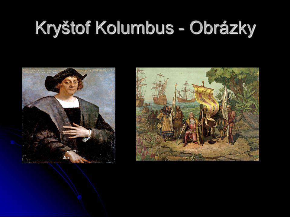 Závěr života Po návratu z poslední výpravy se Kolumbus usadil v Seville, kde se snažil zajistit svým synům bohatství, tituly a pocty, které mu byly sl