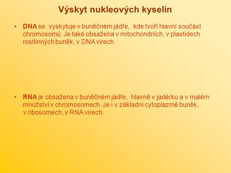 Výskyt nukleových kyselin DNA se vyskytuje v buněčném jádře, kde tvoří hlavní součást chromosomů. Je také obsažena v mitochondriích, v plastidech rost