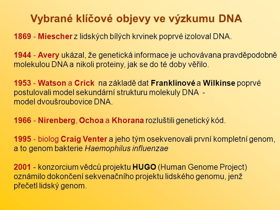 Vybrané klíčové objevy ve výzkumu DNA 1869 - Miescher z lidských bílých krvinek poprvé izoloval DNA. 1944 - Avery ukázal, že genetická informace je uc