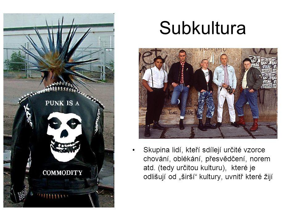 """Subkultura Skupina lidí, kteří sdílejí určité vzorce chování, oblékání, přesvědčení, norem atd. (tedy určitou kulturu), které je odlišují od """"širší"""" k"""