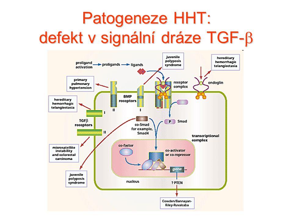 Patogeneze HHT: defekt v signální dráze TGF- 