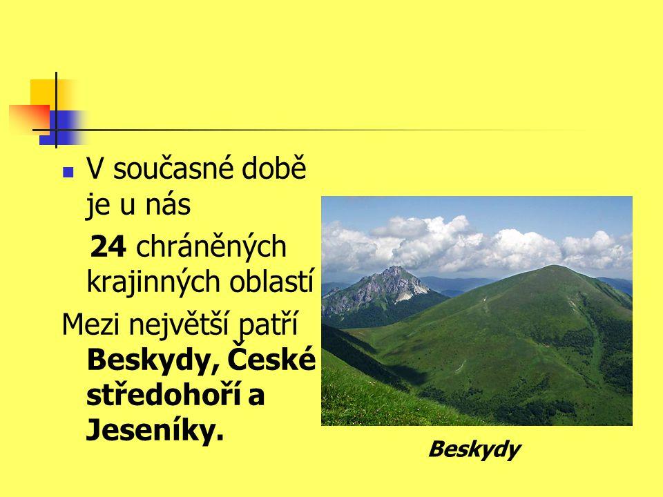 V současné době je u nás 24 chráněných krajinných oblastí Mezi největší patří Beskydy, České středohoří a Jeseníky.