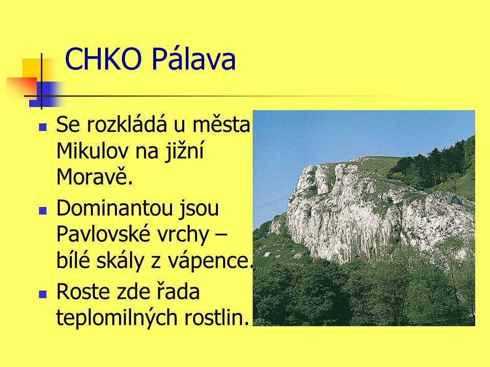 CHKO Pálava Se rozkládá u města Mikulov na jižní Moravě.