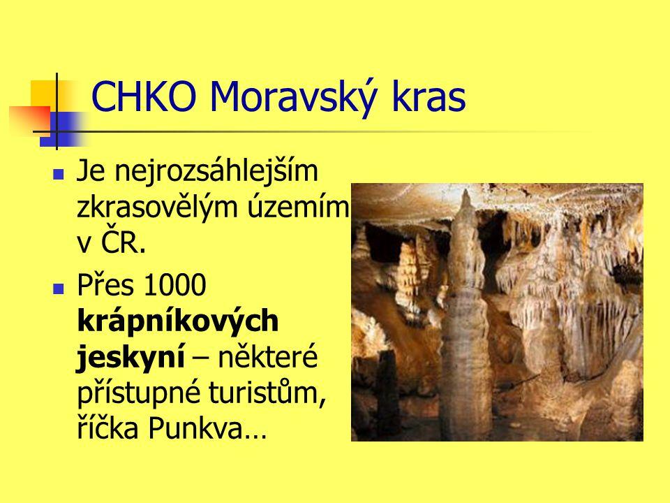 CHKO Moravský kras Je nejrozsáhlejším zkrasovělým územím v ČR.