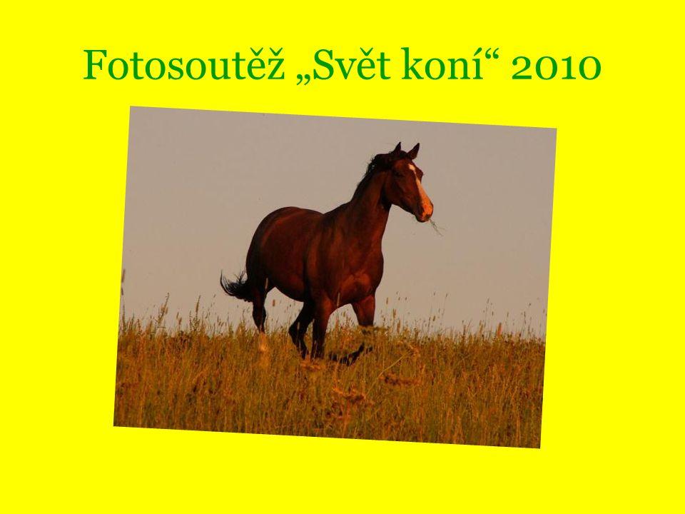 """Fotosoutěž """"Svět koní"""" 2010"""