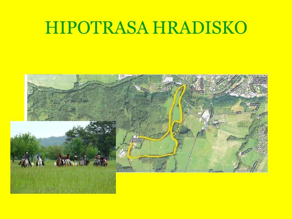 HIPOTRASA HRADISKO