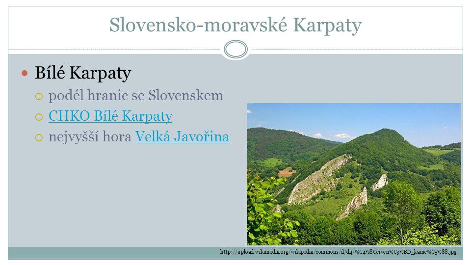 Slovensko-moravské Karpaty Bílé Karpaty  podél hranic se Slovenskem  CHKO Bílé Karpaty CHKO Bílé Karpaty  nejvyšší hora Velká JavořinaVelká Javořin
