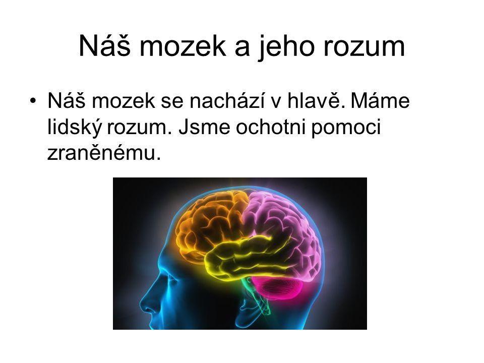 Náš mozek a jeho rozum Náš mozek se nachází v hlavě. Máme lidský rozum. Jsme ochotni pomoci zraněnému.