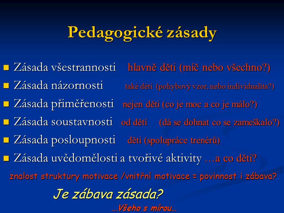 Pedagogické zásady Zásada všestrannosti hlavně děti (míč nebo všechno?) Zásada všestrannosti hlavně děti (míč nebo všechno?) Zásada názornosti také dě