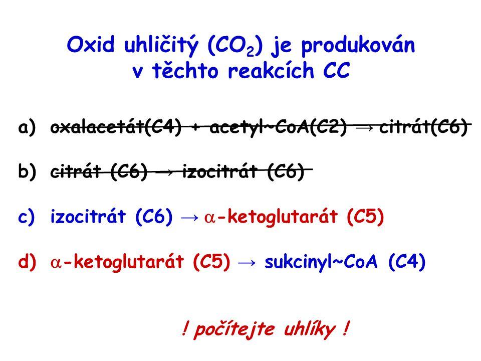 Oxid uhličitý (CO 2 ) je produkován v těchto reakcích CC a)oxalacetát(C4) + acetyl~CoA(C2) → citrát(C6) b)citrát (C6) → izocitrát (C6) c)izocitrát (C6