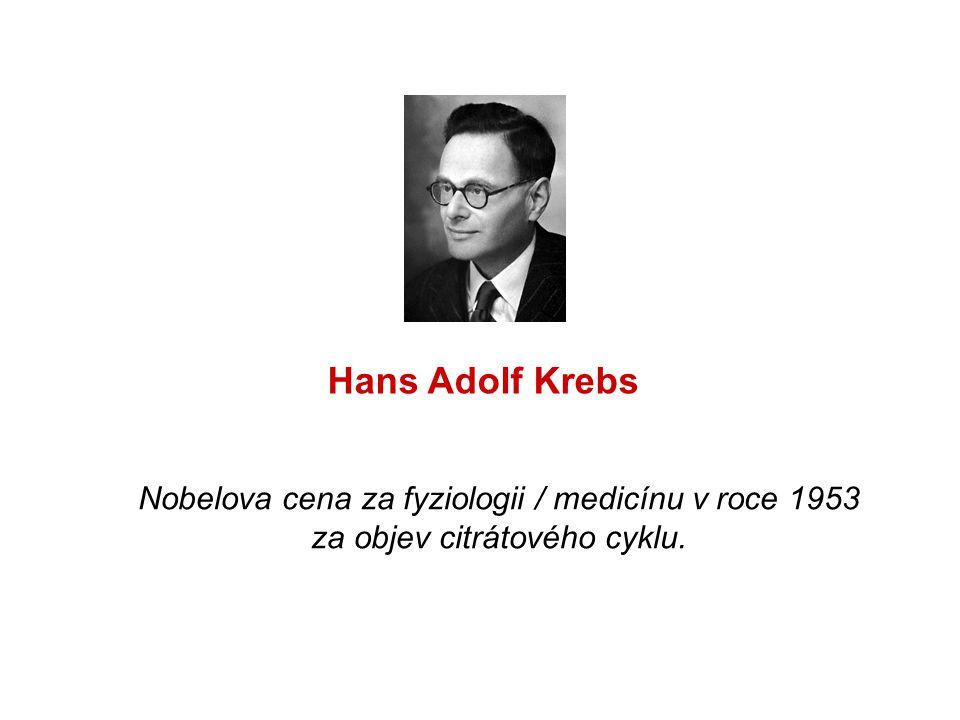 Nobelova cena za fyziologii / medicínu v roce 1953 za objev citrátového cyklu. Hans Adolf Krebs