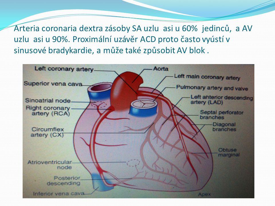 Arteria coronaria dextra zásoby SA uzlu asi u 60% jedinců, a AV uzlu asi u 90%. Proximální uzávěr ACD proto často vyústí v sinusové bradykardie, a můž