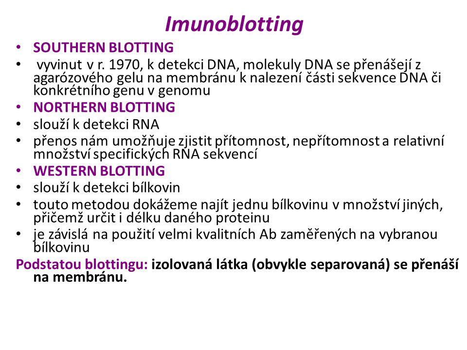Imunoblotting SOUTHERN BLOTTING vyvinut v r.