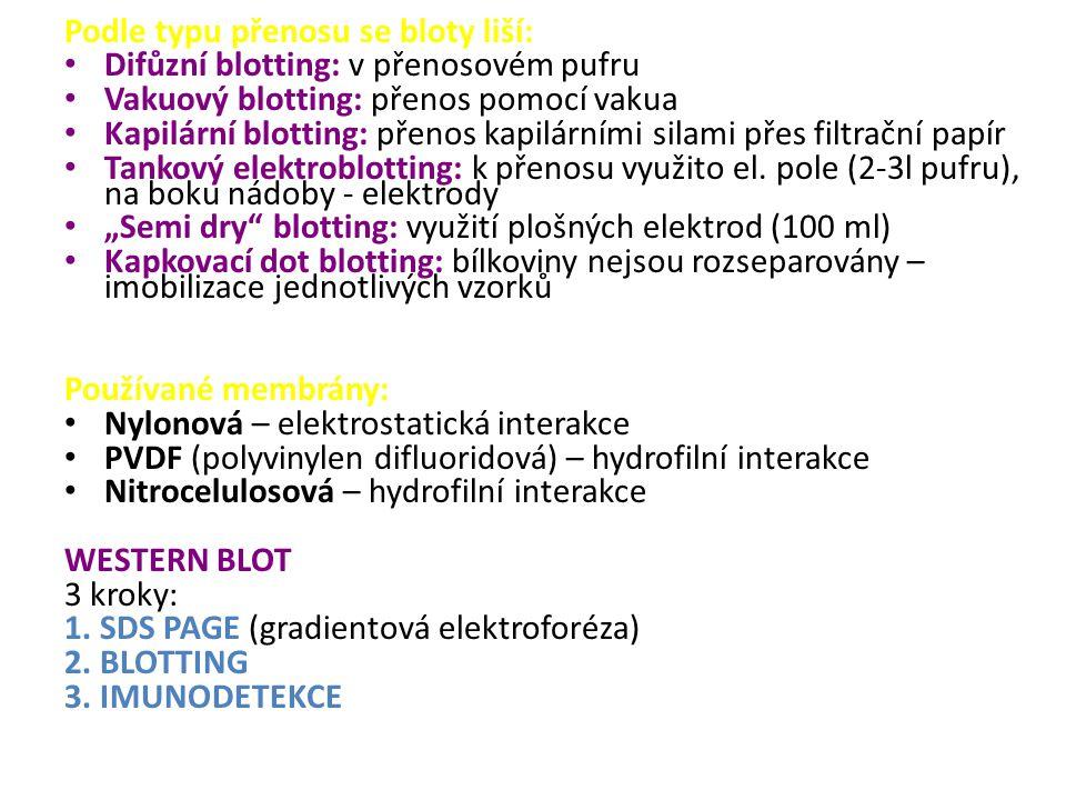 Podle typu přenosu se bloty liší: Difůzní blotting: v přenosovém pufru Vakuový blotting: přenos pomocí vakua Kapilární blotting: přenos kapilárními silami přes filtrační papír Tankový elektroblotting: k přenosu využito el.