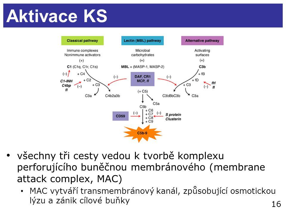 16 Aktivace KS všechny tři cesty vedou k tvorbě komplexu perforujícího buněčnou membránového (membrane attack complex, MAC) MAC vytváří transmembránov