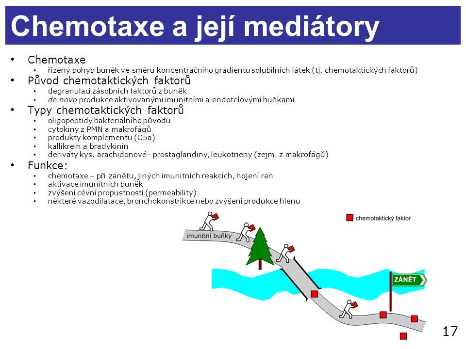 17 Chemotaxe a její mediátory Chemotaxe řízený pohyb buněk ve směru koncentračního gradientu solubilních látek (tj. chemotaktických faktorů) Původ che