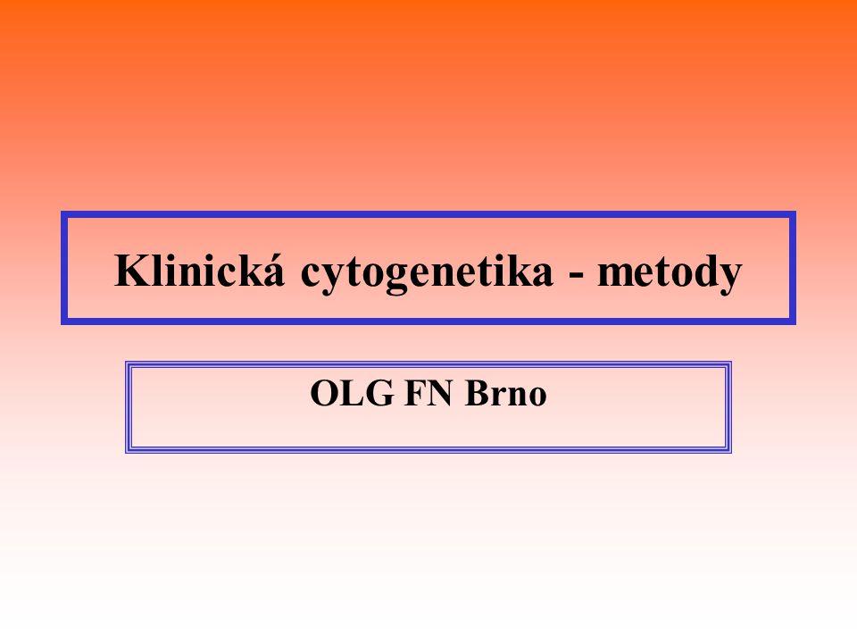 Klinická cytogenetika - metody OLG FN Brno