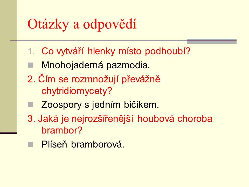 Otázky a odpovědí 1. Co vytváří hlenky místo podhoubí? Mnohojaderná pazmodia. 2. Čím se rozmnožují převážně chytridiomycety? Zoospory s jedním bičíkem