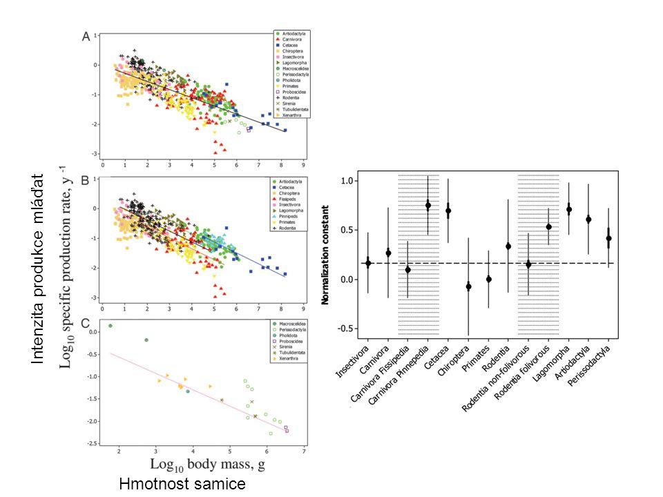 Hmotnost samice Intenzita produkce mláďat