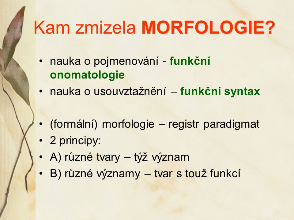 MORFOLOGIE. Kam zmizela MORFOLOGIE.